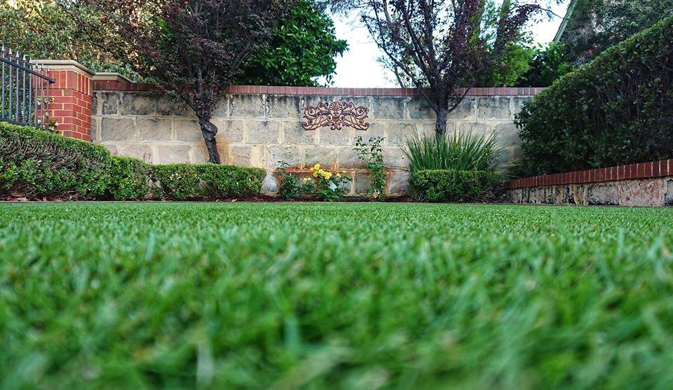 WA Sir Grange lawn owned by Tim Johnson