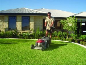 Mowing Heights suitable for lawn care perth