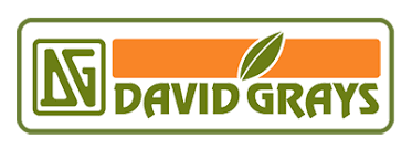 David Grays