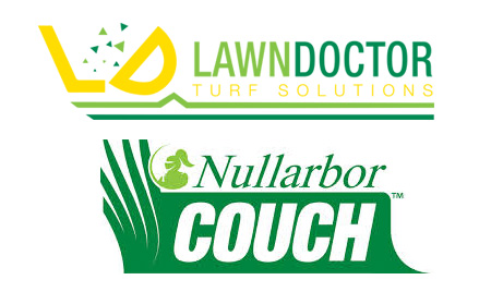 Nullarbor Couch Grass Perth
