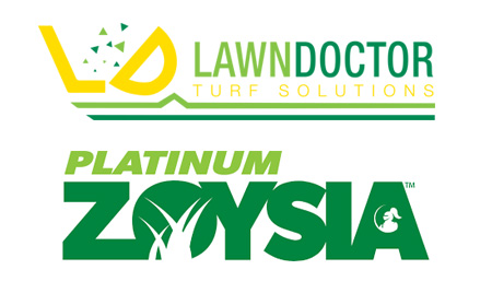 Platinum Zoysia Grass Perth