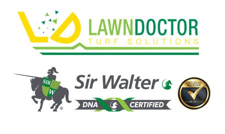 Sir Walter Lawn Perth - Buffalo Lawn Perth - DNA Certified Sir Walter Lawn