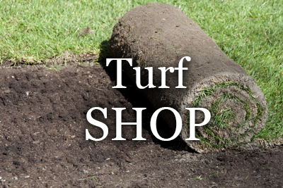 perth online turf shop - buy sir walter turf online
